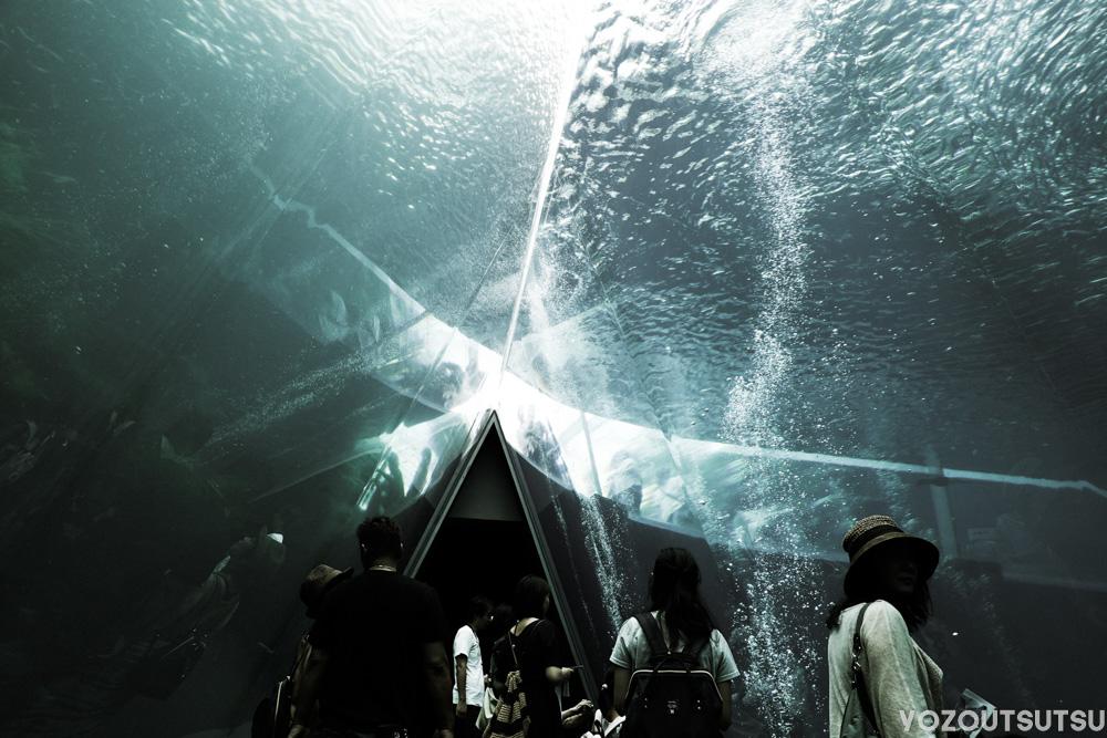 潮目のトンネル