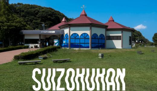 【茨城県の水族館】かすみがうら市水族館の行き方と感想