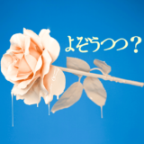 yozoutsutsu よぞうつつの紹介記事
