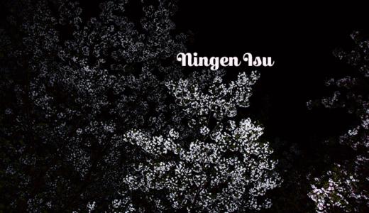 【人間椅子を聴くべし】桜の森の満開の下【オススメ・ライブ定番曲の紹介】