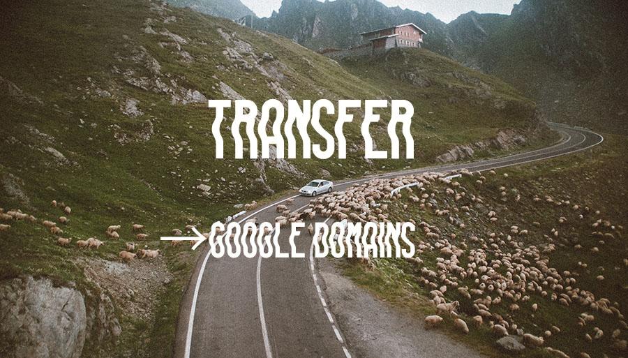 お名前.comからGoogle Domainsへのドメイン移管手順